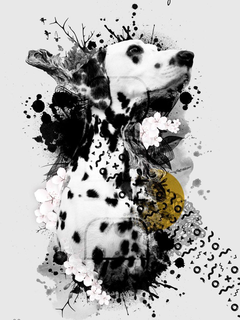 Retrato_perro